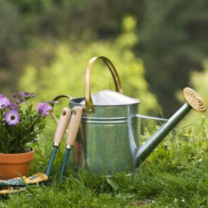 Växtnäring/gödning för trädgård