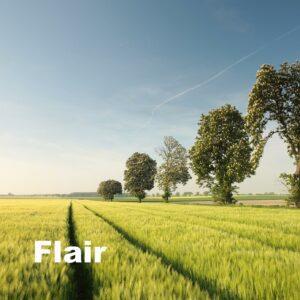 Flair - korn