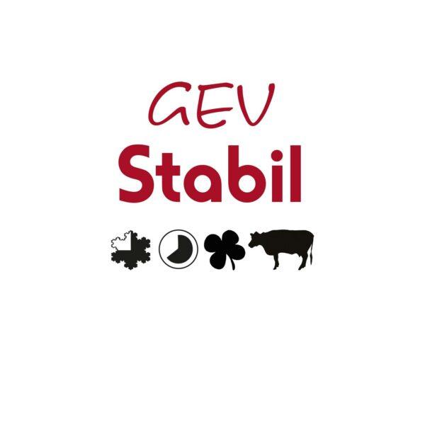 GEV Stabil