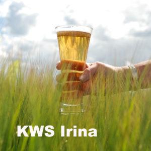 KWS Irina