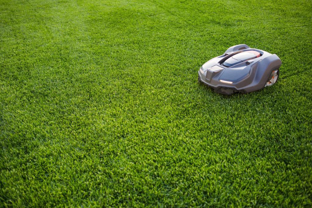 Robottgräsklippare på gräsmatta