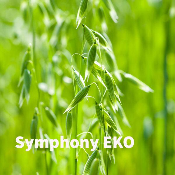 Symphony EKO