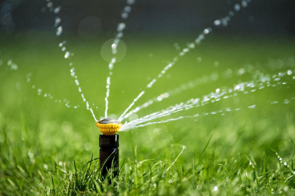 Vattenspridare på gräsmatta